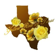 pictures of yellow rose of texas | yellow-rose-of-texas-v2.png