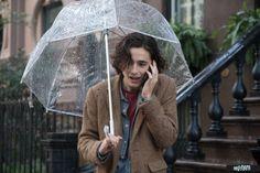 New York Movie, Ideal Type, Timmy T, Woody Allen, Pretty People, Favorite Things, Models, Film, Celebrities