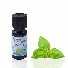 Biopark Cosmetics Basilika eteerinen öljy (Basil) 10ml, vegaaninen tuote Basil Oil, Cosmetics