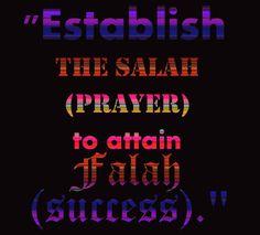 Learn How to Offer | Perform Muslim Prayer Namaz – Salat.