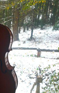 winter cello 2