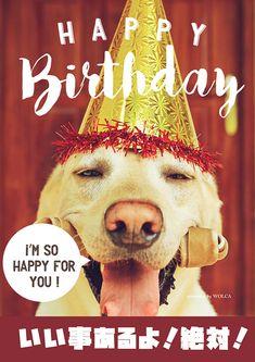 良い事が起こる予感がするお誕生日お祝い画像
