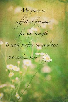 And he said unto me, My grace is sufficient for thee: for my strength is made perfect in weakness. Most gladly therefore will I rather glory in my infirmities, that the power of Christ may rest upon me. (2 Corinthians 12:9 KJV)