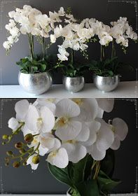 sztuczne orchidee od tendom