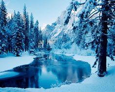 winter #nature
