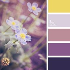 Wonderful range filled with a special charm. Deep, discreet shades of purple, the color of masala, blackberry creates attractive and impressive trio. Scheme Color, Colour Pallette, Colour Schemes, Color Combos, Color Patterns, Paleta Pantone, Paint Color Palettes, Color Balance, Design Seeds