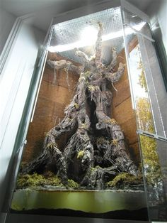 artificial roots