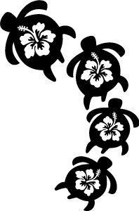 flower turtl, famili, turtles