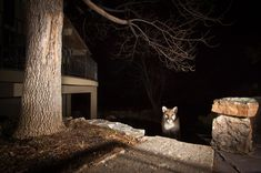 """15 Incredible Photos That'll Remind You to Be Awed by Planet Earth 