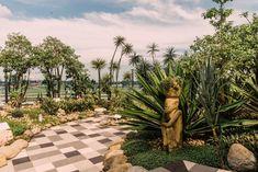 Changi Airport Cactus Garden Singapore Travel Tips, Singapore Itinerary, Singapore Photos, Places To Travel, Places To Visit, Instagram Worthy, Lake Como, Travel Inspiration, Cactus