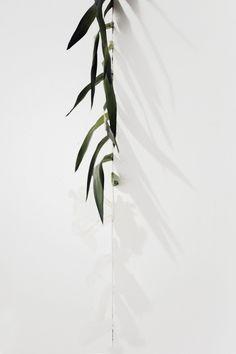 Dirt. Palm Fronds. Cast Skin.   Artist / Künstler: Ryan Estep  