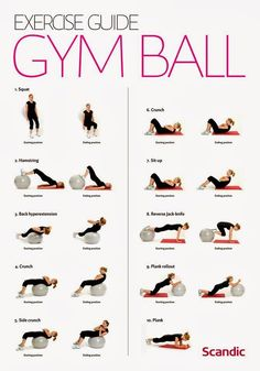 Ever been confused about how to utilize that exercise ball at the gym? Don't sweat it - we've got you covered!