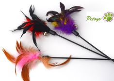 Petoyo ™ Birds Flying Feather Cat Teaser Toy (Assorted Colors (3 Toys)) *** Check out this great product.