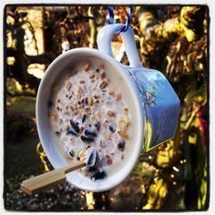 Feeding the birds. // THIS MIGHT HAVE TO BE UPRIGHT SO THE SUET DOESN'T MELT AND POUR OUT. LOVE THE IDEA, THOUGH!!! ♥A