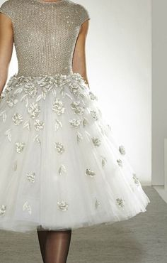 Silver-bodice party dress: white tulle skirt embellished with appliquéd silver leaves. Pretty!