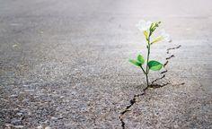 umutsuzluk hakkında size yol gösterecek bir derleme :)
