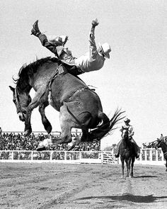 Jim Willuit - 1967 rodeo photos | tusa1-0023.jpg