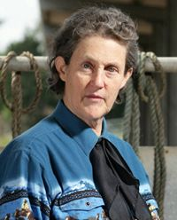 Temple Grandin, Ph.D., arguably the world's most famous person with autism, is also an animal scientist who designs livestock-handling facilities worldwide and is an assistant professor of animal sciences at Colorado State University. She received her degree in animal science from the University of Illinois and is a frequent lecturer on autism. She has authored numerous books on both subjects.