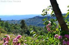 Immobilienangebot - Massa Marittima - Antikes Anwesen aus dem Florentiner Adel mit wunderbarem Panorama