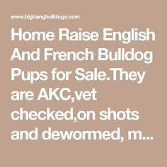 Home Raise English And French Bulldog Pups for Sale.They are AKC,vet checked,on shots and dewormed, microchip, Health guarantee, with shipment.