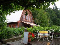Salt Spring Winery, Salt Spring Island, B.C. Salt Spring Island Bc, O Canada, Pipe Dream, Quebec City, Vacation Places, Vancouver Island, Banff, British Columbia, Cheers