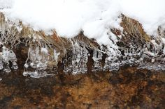 Eisgebilde im Schwarzwassertal - Naturfotosammlung
