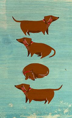 Dachshund graphic design inspiration, illustration inspiration, dog illustrations