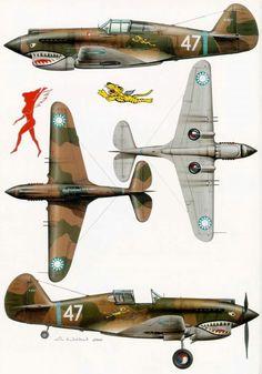 Livrea dei Curtiss P-40 delle celebri Flying Tigers.