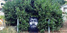 """20 απίθανα graffiti """"παίζουν"""" με την φύση Graffiti, Street Art, Hobbies, Plants, Planters, Plant, Graffiti Artwork, Planting, Planets"""