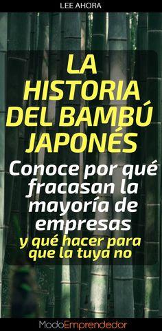 La historia del bambú Japonés, es una muestra clara del gran error que comete un emprendedor al pensar que debe abandonar su idea.