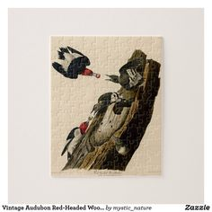 Vintage Audubon Red-Headed Woodpecker Painting Jigsaw Puzzle