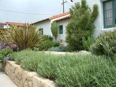Sunny Mediterranean Garden