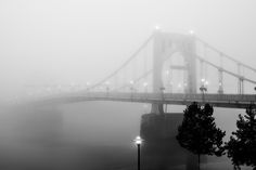 Clemente Bridge in Pittsburgh, PA. Pittsburgh Pa, Bridges, Pennsylvania, Westerns, Places To Visit, America, Steel, City, Travel