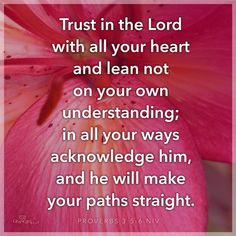 View Trust in the Lord with All Your Heart - Inspirations. Share, pin and like encouragement for Christian women. Biblical Quotes, Religious Quotes, Spiritual Quotes, Wisdom Quotes, Life Quotes, Spiritual Encouragement, Spiritual Guidance, Spirit Of Truth, Inspirational Blogs