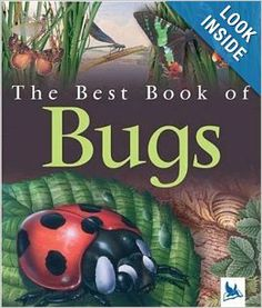 The Best Book of Bugs: Claire Llewellyn: 9780753459010: Amazon.com: Books