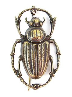 Apothecary Beetle Study Brooch by Amano Trading Co, Gold