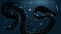 New Year Snake by Rain-shade on DeviantArt