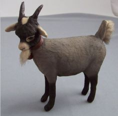 Pygmy Goat, Billy the Goat by Craig Yenke.