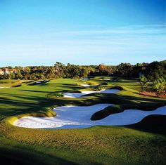 Grande Pines Golf Club in Orlando, Florida. A Shotmaker's Paradise...by Design. Renowned golf course architect Steve Smyers has designed one of Florida golf's most dynamic new golf courses, Rated 4 1/2 stars with Magnificent Florida scenery with tall pines and oaks.