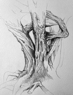 Croquis d'un arbre sur la plage dessin Lise Dupin 2013