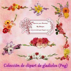Recursos Photoshop Llanpac: Colección de clipart de Gladiolos para diseño (Png...