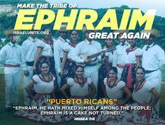 #Hosea7:8 Ephraim, he hath mixed himself among the people; Ephraim is a cake not turned. Learn more at Israelunite.org #Osée 7:8 Éphraïm se mêle avec les peuples, Éphraïm est un gâteau qui n'a pas été retourné. Apprenez-en plus à Israelunite.org #IUIC #UsAgainstTheWorld #BlacksHispanicsNativeAmericans #BrothersAndSisters #Familia #Israelites Latino News, Puerto Ricans, Sisters, Bible, Learning, Cake, Israel, January, Instagram