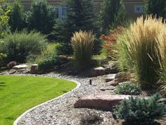 Xeriscape Landscaping. This design provides real curb appeal as well as privacy for those in the house.