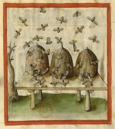 Some illumination from manuscripts about bees and beekeeping..Willowbrook Park
