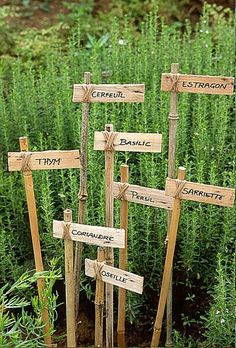 Ideas for diy garden signs plant markers herbs Veg Garden, Edible Garden, Bamboo Garden, Garden Art, Easy Garden, Wooden Garden, Garden Planters, Garden Crafts, Garden Projects