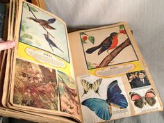 Vintage Scrapbook | That's Purty: The Vintage Scrapbook