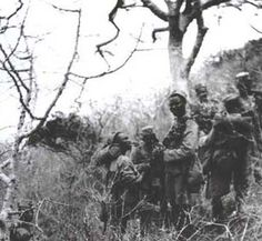 81st West African Division - Royal West African Frontier Force