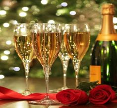 Celebration - Champagne, Merry Christmas, Red Rose, Rose, Christmas, Christmas Magic, Red, Celebration, New Year, Sparkle