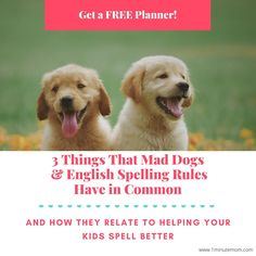 Article series about how parents who are helping their kids get better at spelling, can get access to some free tools that help with planning the spelling curriculum. Article includes the free tools. Spelling For Kids, Spelling Rules, Memory Management, Management Tips, Curriculum, Homeschool, English Spelling, Learn To Spell, Free Planner