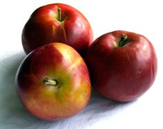 Crimson Beauty Apples have skin tinged with red streaks when fully ripe.    Some people think they occasionally detect a hint of raspberry in the tart flavour. http://www.cooksinfo.com/crimson-beauty-apples
